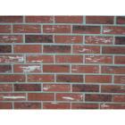 Z-Brick Inca 2-1/4 In. x 8 In. Facing Brick Image 1